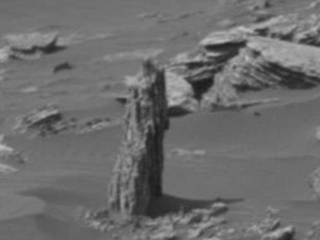 Найденное на Марсе дерево озадачило ученых