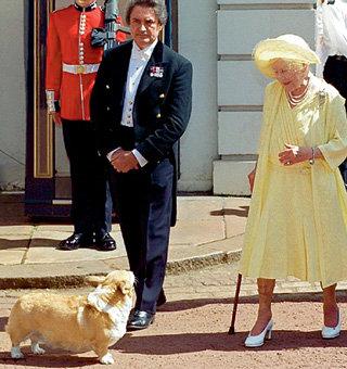 Нечеловеческую любовь к животным англичанам привила королева Елизавета