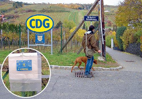 Уровень жизни в Австрии настолько высокий, что любой желающий может бесплатно набить в Гринцинге пузо виноградом с лоз, посаженных великими людьми. И даже унести пару гроздей домой. Для этого на заборе висят специальные пакетики