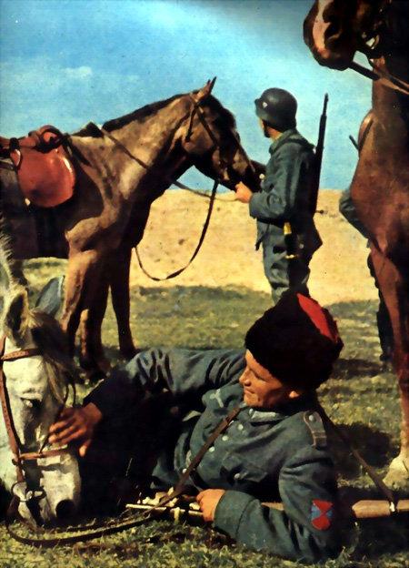 Казак на привале любовался конем, а фриц – простором русских степей