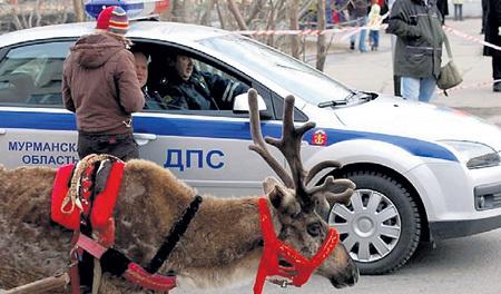 Чем заморачиваться с квитанциями, нарушители чаще договариваются на месте. Фото: kiifolog.ru