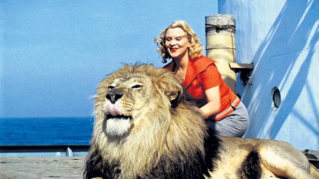Маргариту НАЗАРОВУ в картине «Полосатый рейс» слушался даже царь зверей. Кадр из фильма