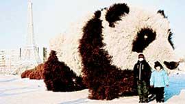 СТОИТ МОРОЗНЫЙ ЗИМНИЙ ДЕНЬ: но панду навестить не лень!