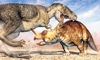 Кровавые выяснения межвидовых отношений между динозаврами оказались бесполезными: вымерли все
