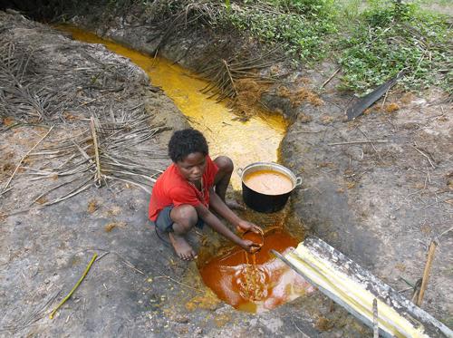 Завершающий этап изготовления пальмового масла аборигенами Конго. Фото: Википедия