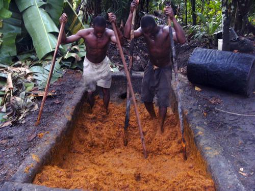 Аборигены готовят пальмовое масло. Фото: Википедия