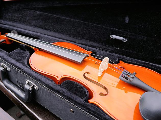 Японка измести уничтожила скрипки экс-супруга на $950 тыс.