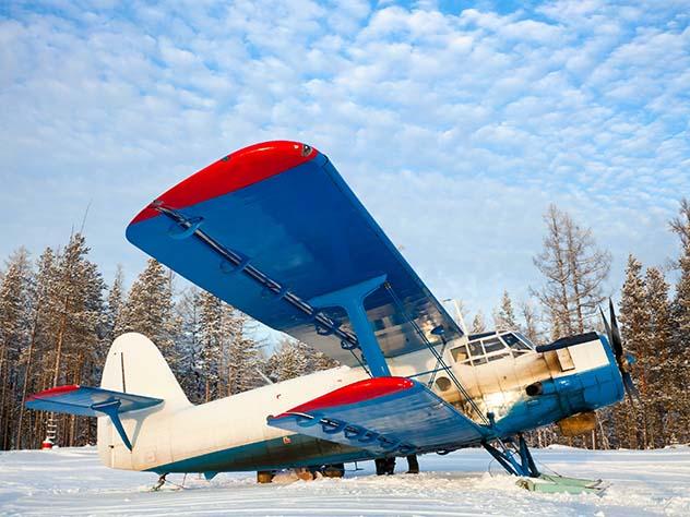 Пофакту падения самолета АН-2 вАмурской области возбуждено уголовное дело