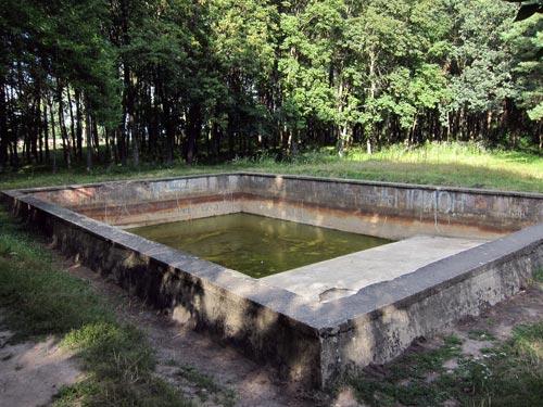 Прекрасно сохранившийся бассейн в центральной части Ставки. Фото: wikimedia.org