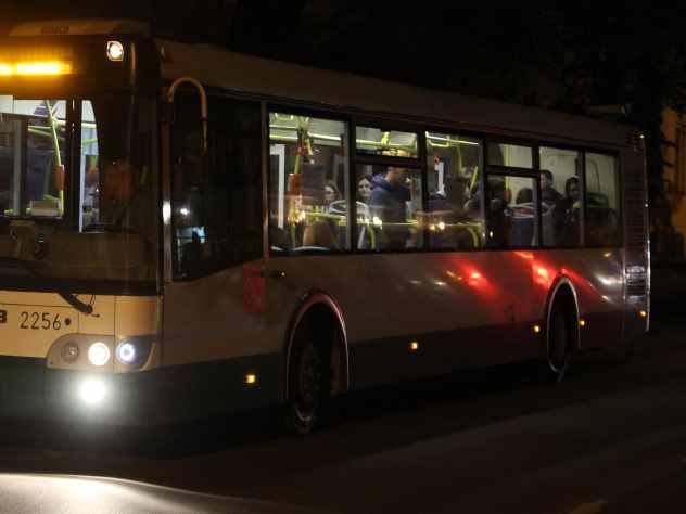 Водитель следовавшего в Пермь автобуса высадил ребенка ночью в поле