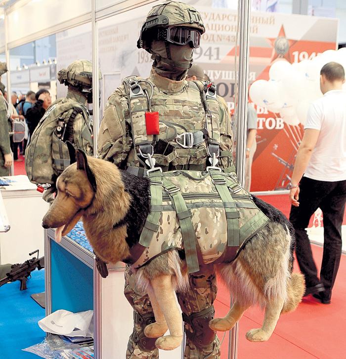 Снаряжение для десантирования с воздуха вместе с собакой